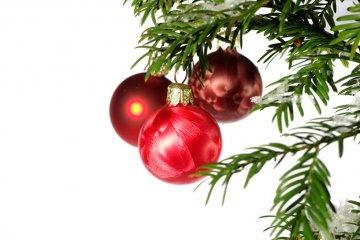 Bo�e Narodzenie
